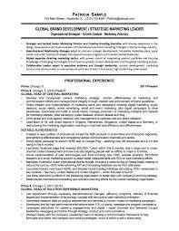 Non Profit Resume Resume Samples Chicago Resume Expert