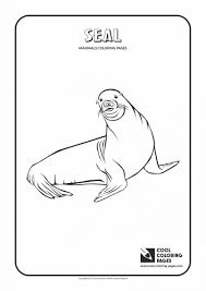 coloring pages animals harp seal mother and baby coloring page
