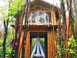 this tiny off grid hawaiian home cost just 11 000 to build eco