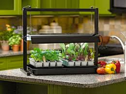 Indoor Herb Garden Kit Australia - indoor herb garden light gardening ideas