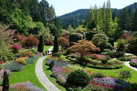butchart gardens landsea tours u0026 adventures landsea tours