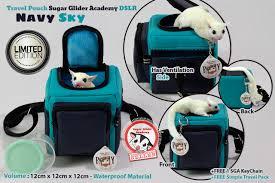 travel pouch images Sugar glider academy travel bonding dslr navy sky bonus jpg