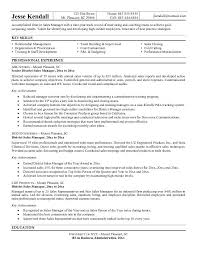 Sales Director Resume Examples by District Manager Resume Sample The Best Resume