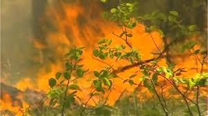 Wildfire La Area by La Wildfire Spreads Following Evacuations Youtube