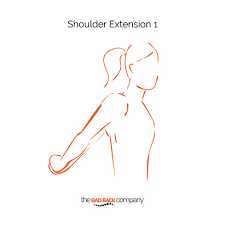 Neck Exercises At Desk Posture Exercises You Really Can Do At Your Desk