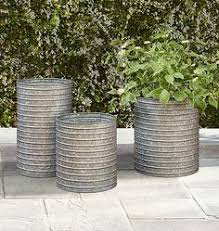 for the back patio but with lemon grass to keep away the mosquitos