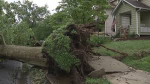powerful storms bring down tress cause flooding power outages