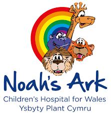 noahs ark childrens hospital philips healthcare consulting