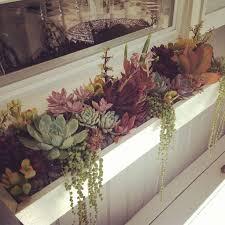 best 25 window box planter ideas on pinterest outdoor flower