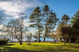 Hamilton Viewpoint Park West Seattle Washington by Me Kwa Mooks Park Wikipedia