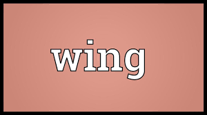 wing meaning
