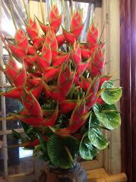 tropical flower arrangements beautiful tropical flower arrangements throughout the restaurant