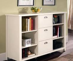Lateral File Cabinet Ikea Ikea Wood File Cabinet Bothrametals