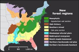 Map Of North East Usa Eastern Deciduous Forest