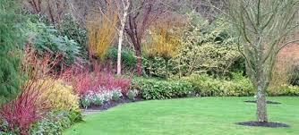 Anglesey Abbey Winter Garden - bbc gardening blog britain u0027s best winter gardens