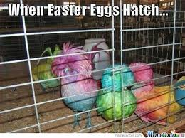 when easter eggs hatch by the crazy and insane meme center