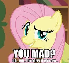 Mlp Fluttershy Meme - 5470 caption fluttershy macro meme n1302718 by mistybearjohnson