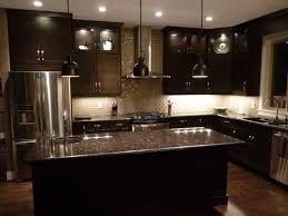 Cabinet In Kitchen Design The Amazing Idea Of Black Cabinets In Kitchen U2014 Tedx Designs