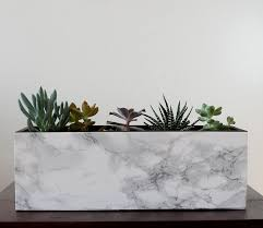 marble succulent planter diy itsprettynice
