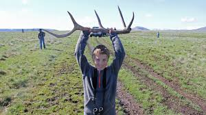 elk antlers on the prairie a shed hunt to benefit the local