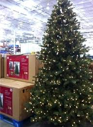 christmas tree prices artificial tree costco canada christmas trees prices decoration