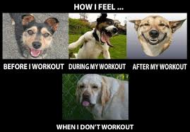 Exercise Meme - the best of funny fitness memes 20 pics
