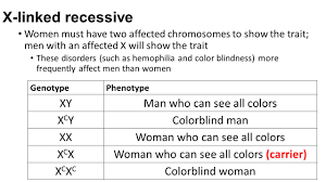 Does Colour Blindness Affect Males Or Females More No Bell Work Today Set Up The Next Page In Your Journal U2026 Page 44