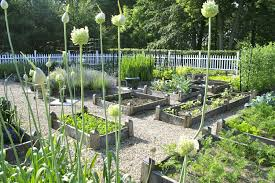 Small Vegetable Garden Plans by Small Vegetable Garden Plans Uk The Garden Inspirations