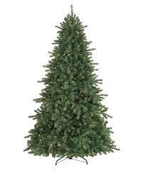 douglas fir tree california douglas fir artificial christmas tree treetopia