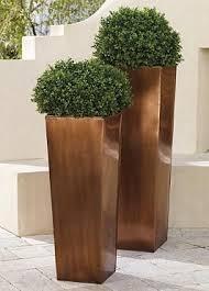 30 best i like em tall images on pinterest landscaping tall