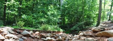 Clemson Botanical Garden by Basic Mesic Forest South Carolina Botanical Garden Clemson