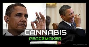 Memes De Obama - cannabis peacemaker obama weed memes weedmemes marijuanamemes