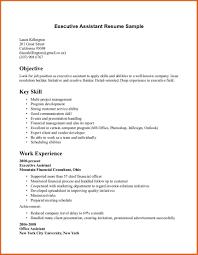 Summary For Job Resume Good Professional Skills Cbshow Co