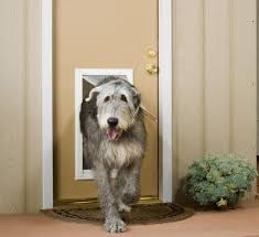 Patio Pacific Pet Doors Dog Doors Cat Doors Endura Flap Pet Doors Patio Pacific Pet