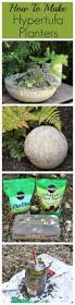 Miracle Grow Patio by 1203 Best Garden Containers Images On Pinterest Gardening