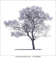 collection of trees silhouettes stock vector 82176229