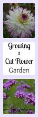 cut flower garden hakkında pinterest u0027teki en iyi 20 fikir uzun