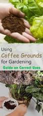 1603 best gardening images on pinterest vegetable garden