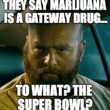 Broncos Superbowl Meme - they say marijuana is a gateway drug to what the superbowl