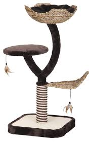 Modern Cat Tree 15 Best Chat Images On Pinterest Cats Cat Furniture And Cat Stuff