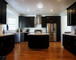 What To Use To Clean Greasy Kitchen Cabinets Kitchen Kitchen Cabinet Degreaser Luxury How To Degrease Kitchen