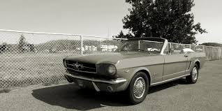 national mustang day takes place in april ford authority