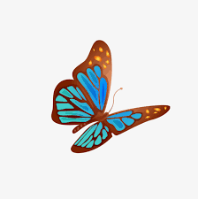 butterfly small butterfly butterfly png image and