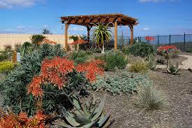 San Diego Landscape by Landscape 10 Archives Letz Design