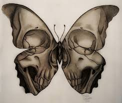 medusa illustration skull butterfly design