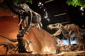 museum of ancient life thanksgiving point a visit to the museum of ancient life in lehi utah not a