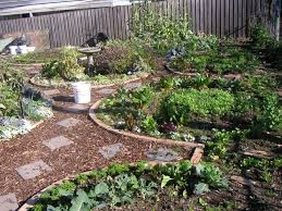 Best Permaculture Backyard Gardens Images On Pinterest - Backyard permaculture design