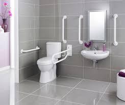 handicap grab bars and disability shower u2014 the homy design