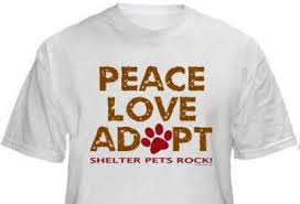 second chance canine adoption shelter home