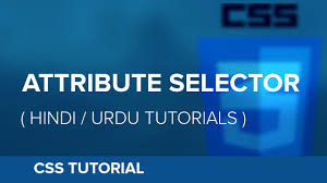 css tutorial in urdu how to use attribute selector in css hindi urdu tutorial youtube